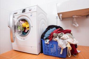 Meneszthetik a környezetvédelmi alap elnökét a háztartási gépek roncsprogramjának kudarca miatt