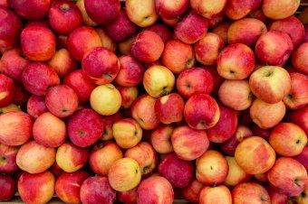 Maros megyébe érkező gyümölcs- és zöldségszállítmányokat ellenőriztek