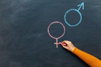"""""""Egészségügyi nevelés"""": ősszel születhet döntés az iskolai szexuális felvilágosítás kérdésében"""