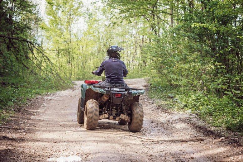 Erdőben gépjárművel közlekedőket bírságoltak