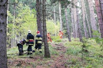 Lánctalpas járművel mentették ki az erdőből a sérültet