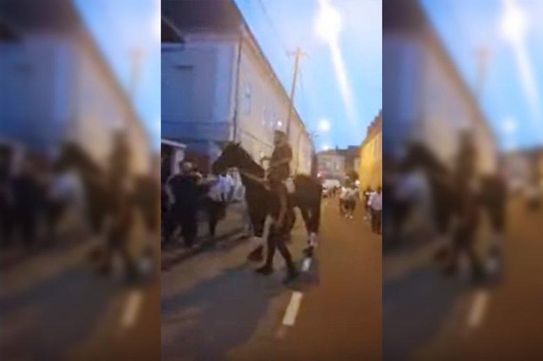 A rendőrség őrizetbe vette, a társai viszont lovat adtak alája