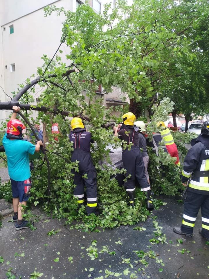 Parkoló autóra dőlt egy fa Székelykeresztúron
