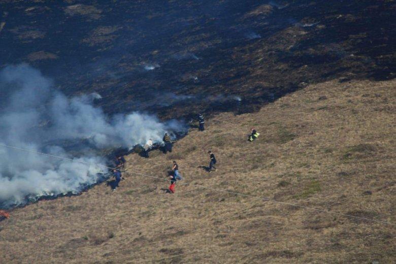 Hargita megye: öt helyen is felcsaptak a lángok egyetlen délután alatt