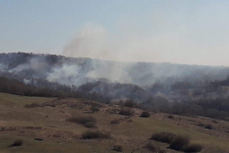 Piknikezésből erdőtűz: több mint tíz hektáron pusztítottak a lángok a Szarkakőn