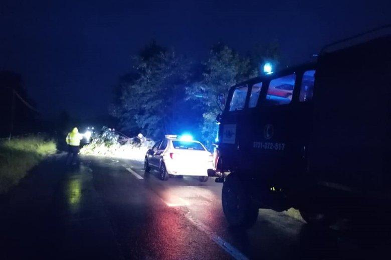 Fa zárta el az utat, árvíz volt Bögöz községben