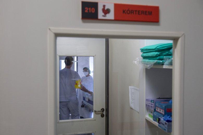 Bejelentés: egyetlen igazolt fertőzött sincsen Csíkszeredában