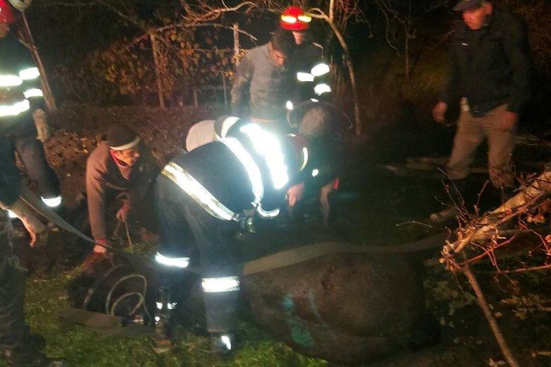 Kútból mentettek ki egy lovat a tűzoltók