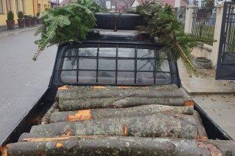 Nem tudott elszámolni a szállított faanyaggal, ezért elkobozták