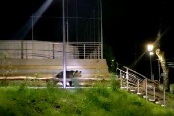 Szirénával hajtották el a medvéket Tusnádfürdőn hétfőn éjszaka