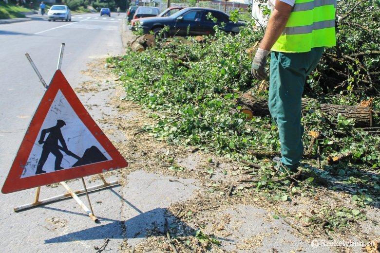 Fákat döntött az úttestre és villamosvezetékeket rongált meg a szél Hargita megyében