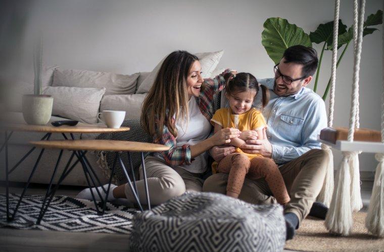 Hogyan biztosítson otthona számára fix árat a villamos energiáért 12 hónapra? (x)
