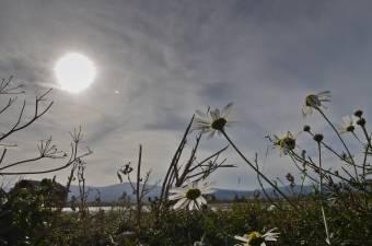 Egyre gyakoribbá válik az 50 fokot elérő hőség a fosszilis tüzelőanyagok égetése miatt
