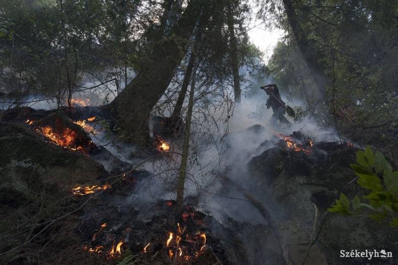 Nem borítja radioaktív felhő Romániát a csernobili erdőtűz miatt