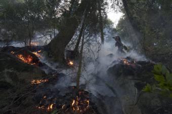 Több hektárnyi területen lángol a Vaskapu Nemzeti Park