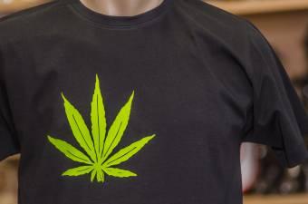 Az innovatív kezelések biztosítása érdekében mérlegeli az orvosi marihuána legalizálását az egészségügyi tárca