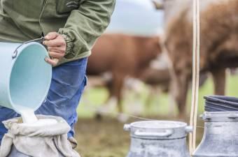 Tovább tart a tejválság: csökkent a felvásárlási ár, a boltokban mégis drágul a termék