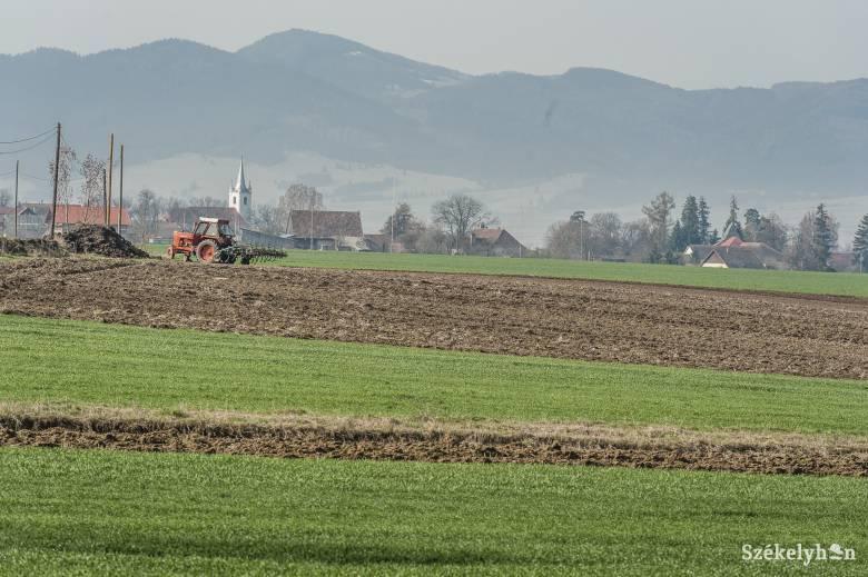 Fókuszban az erdélyi agrárium
