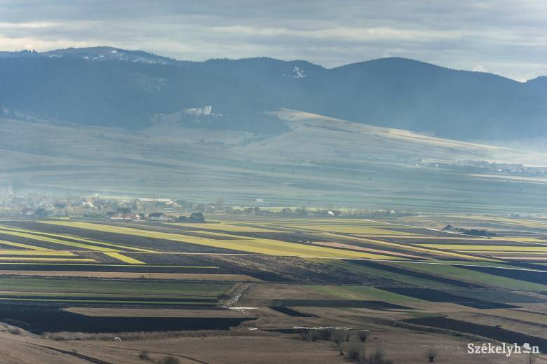 Komoly gondokat okozhat az enyhe és csapadékhiányos tél a mezőgazdaságban