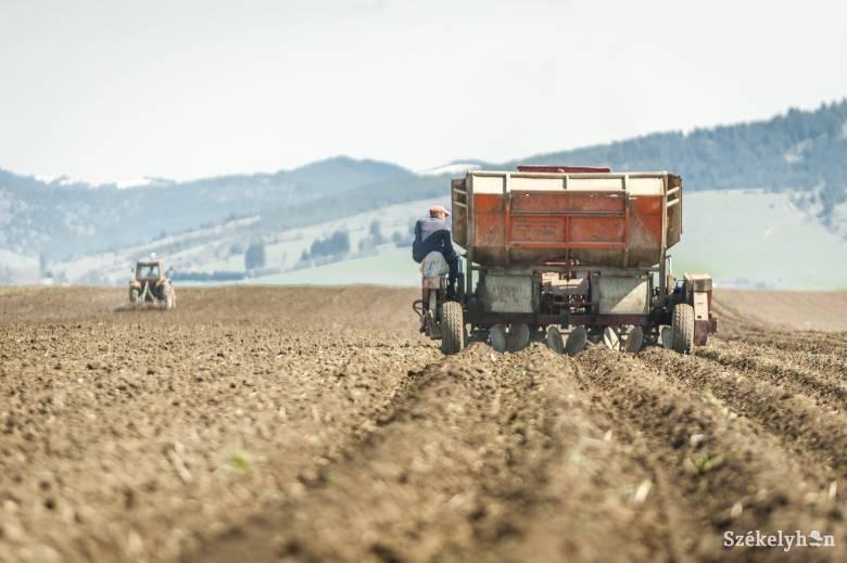 Csak a teljes gépesítéssel tudják orvosolni a fokozódó munkaerőhiányt a székelyföldi gazdák