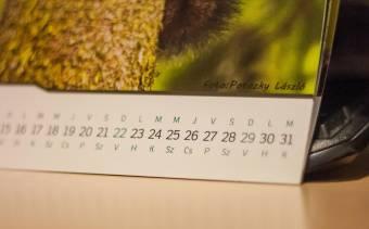 Minivakációk jönnek: szabadnapnak nyilvánítja december 27-ét és január 3-át a közszférában a kormány