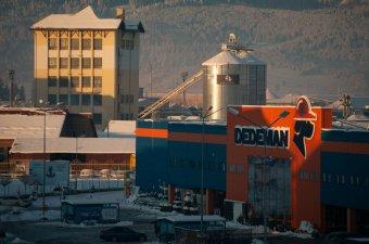 A Dedeman fizeti a legtöbb társasági adót a romániai kiskereskedelemben