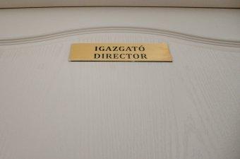Az ideiglenes iskolaigazgatót az illető intézmény vezetőtanácsa nevezi ki a parlament döntése szerint