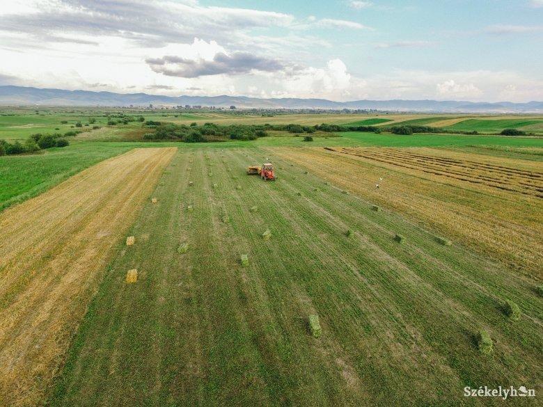 Nem várt pénz a gazdáknak: kiegészítik a tavalyi APIA-támogatások értékét