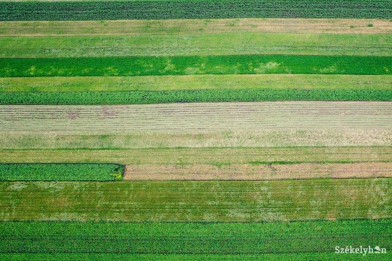 Közel négyszáz hektárnyi terület tulajdonviszonyát rendeznék