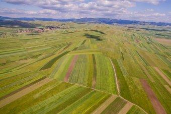 A támogatást igénylő gazdák száma csökkent, az összterületé nőtt
