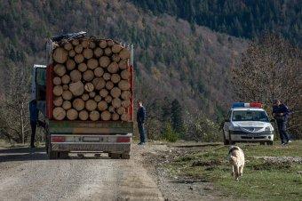 Elszaporodtak a környezetvédelmi bűncselekmények, példát statuálna a szakminiszter