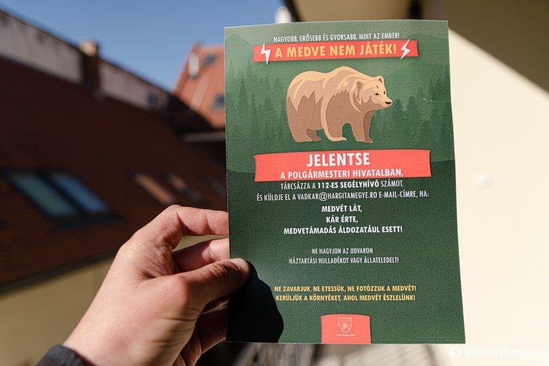 Elengedhetetlen a kárbejelentés: figyelemfelkeltő kampányt indítottak a medvehelyzet miatt