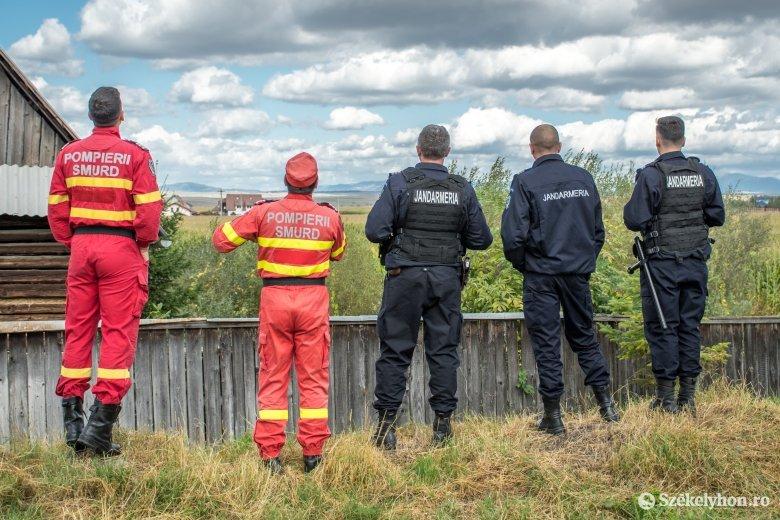 Medve vs. csendőrség: altatólövedékes fegyverrel kerülnek előnybe a Maros megyei egységek