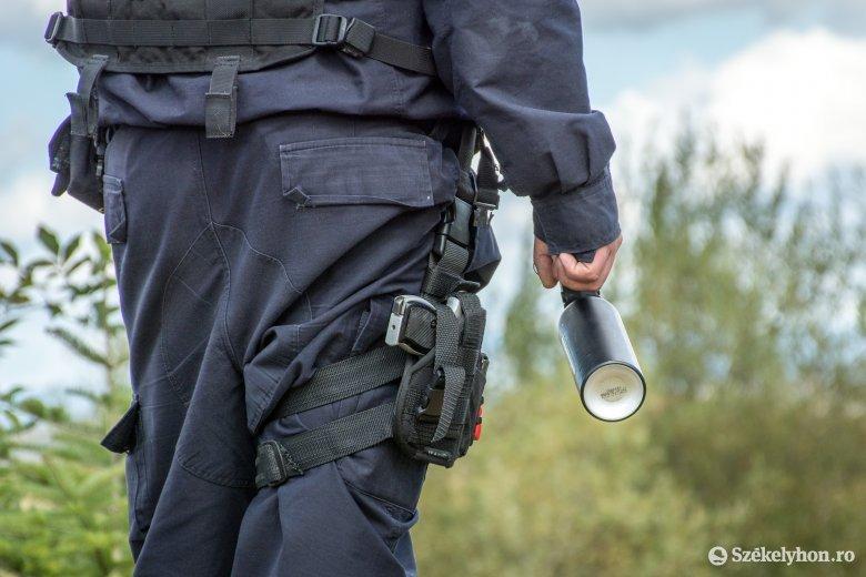 Nagykadácson és Felsőboldogfalván is medve miatt riasztották a csendőröket