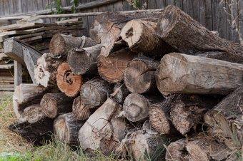 Csökkentenék november elsejétől a tűzifa áfáját