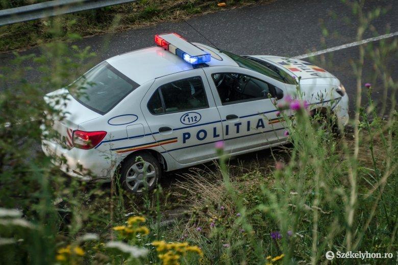 Szekéren szállította a lopott fát, amikor az éppen járőröző rendőrök leigazoltatták