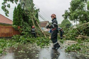 Kidőlt fák, áramszünet, áradások – ismét súlyos károkat okozott a szélsőséges időjárás