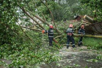 Elárasztott házak, úttestre dőlt fák: több településen is súlyos károkat okozott a viharos időjárás