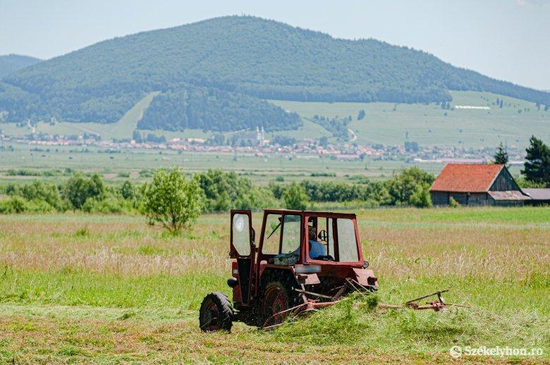 Íme, ennyien hagytak fel az elmúlt tíz évben a mezőgazdasággal Csíkszeredában