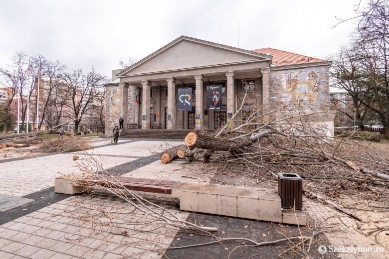 Kényszermegoldásból vágták vissza a Csíki Játékszín előtti fákat