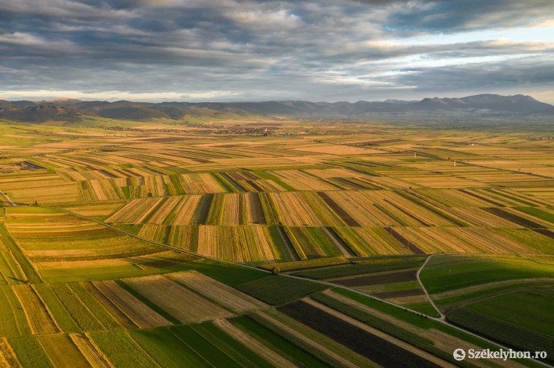 Új rendszert vezettek be a mezőgazdasági területek adásvételével kapcsolatosan