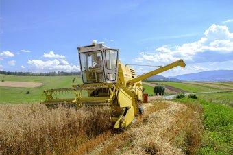 Tíz éve nem készült olyan átfogó felmérés az agrárszektorról, mint most