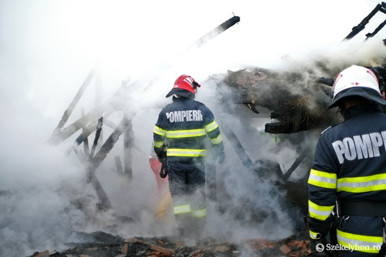 Szemétlerakó mellé helyezett száraz fenyőfák gyulladtak ki Marosvásárhelyen