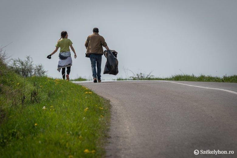 Külföldi önkéntesek teszik szebbé a Pacsirta sétányt