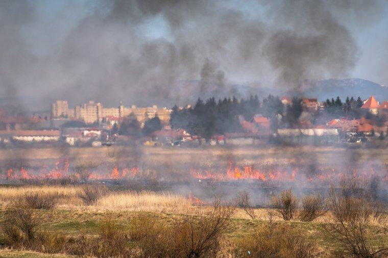 Csiba után a Sutában égett a száraz aljnövényzet