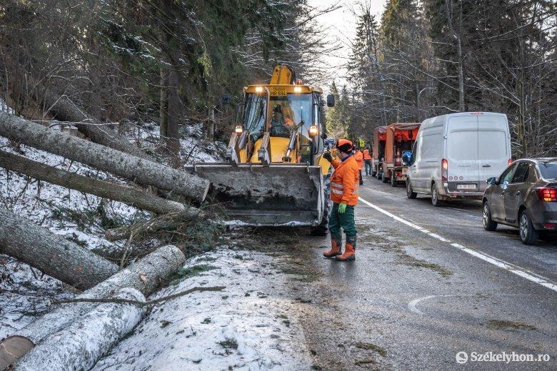 Az erdőkben okozott jelentős károkat a vihar, és még nincs vége a készültségnek