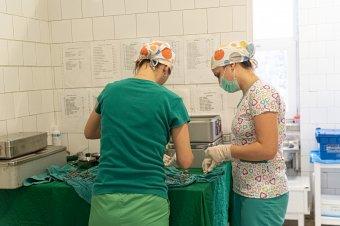 Törvénytervezet: kötelező lesz a Covid-igazolvány az egészségügyi alkalmazottak számára