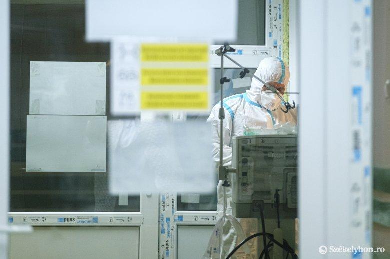 Fekete vírusnap: megdőlt az új fertőzöttek, az elhunytak és az intenzíven kezeltek számának rekordja is