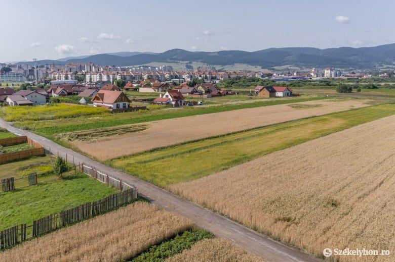 A lakók és a beruházó másképp látják a fejlesztés útját