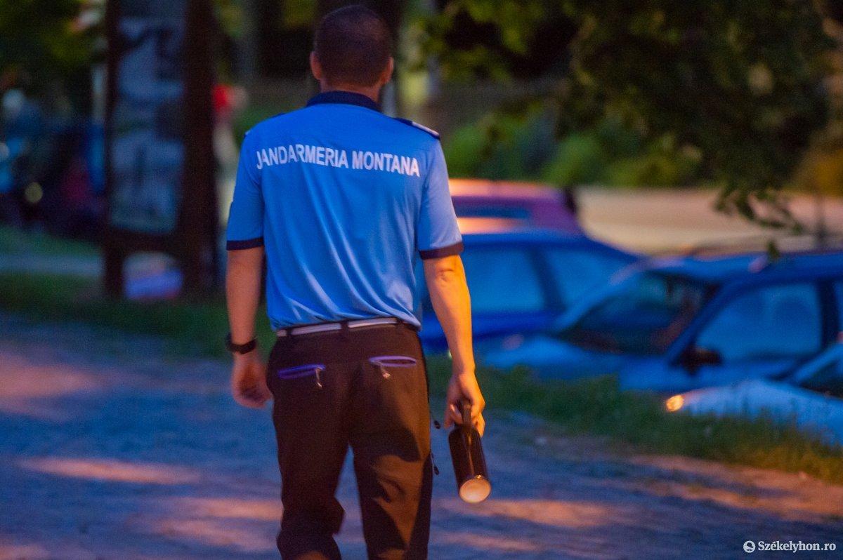 Este tíz óráig a helyi csendőrség felvigyázza a közbiztonságot, késő este viszont már a medvéké a város. A 112-es segélyhívószám értesítésére csak egyórás késéssel, Csíkszeredából érkezik a segítség. •  Fotó: Beliczay László
